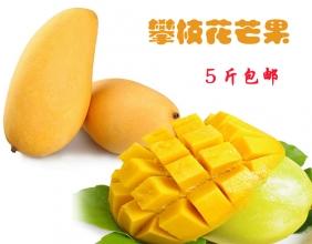 【组团预购】攀枝花芒果,6月上旬上市,低价预售! 5斤包邮